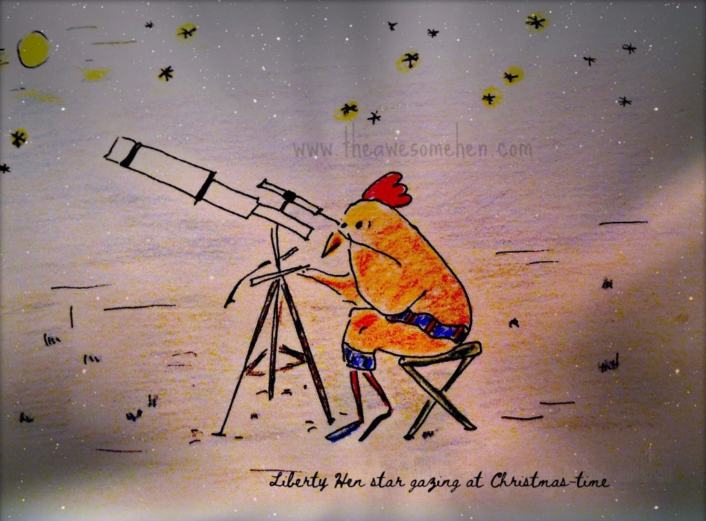 Star Gazing at Christmas