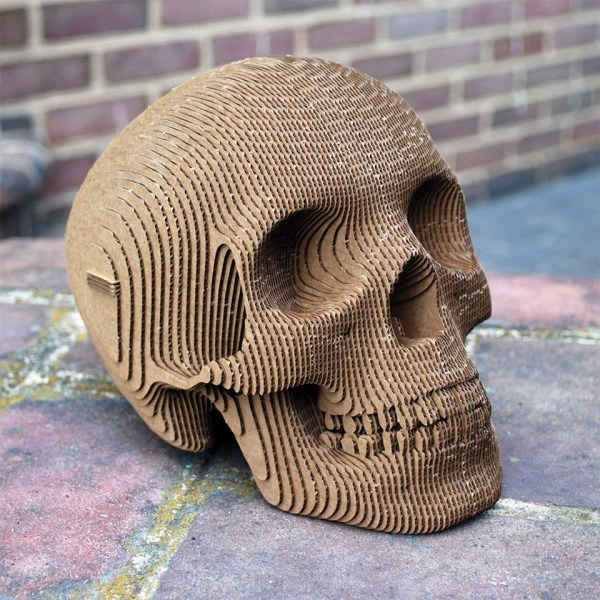 Vince Cardboard Skull Human