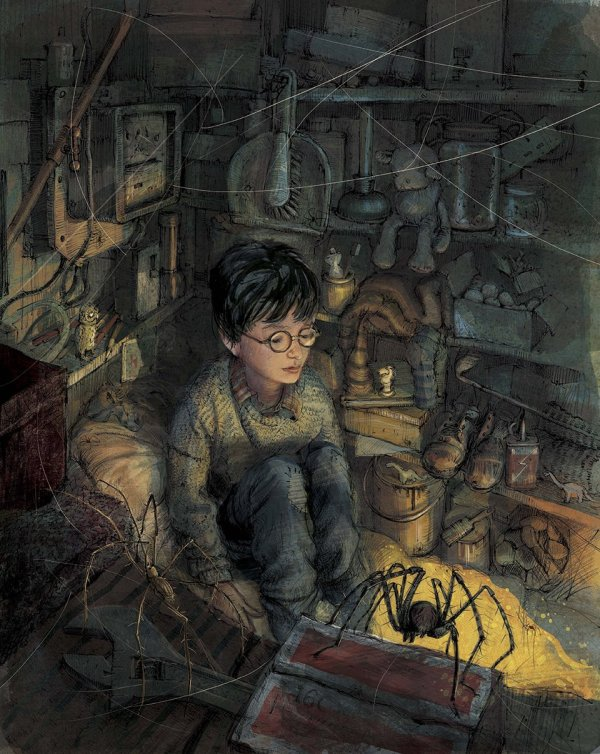 Harry Potter 1 Illustrated Edition - Awesomer