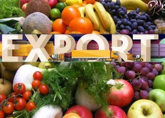 Export of fruits & vegetables