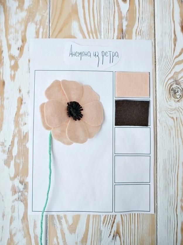 anemone-materials