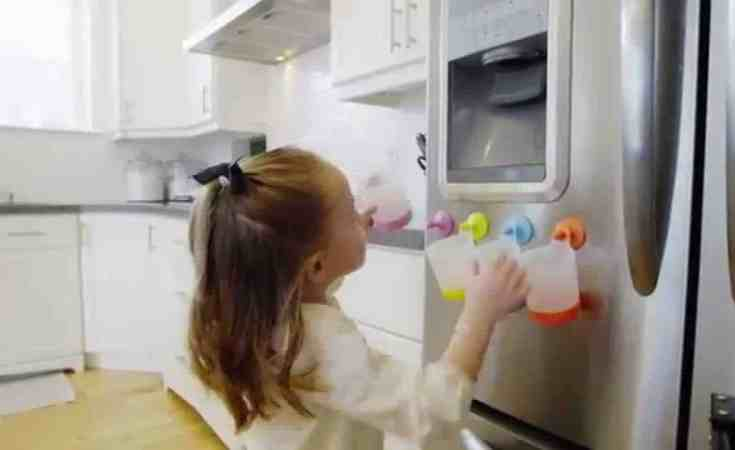 puj fridge cups