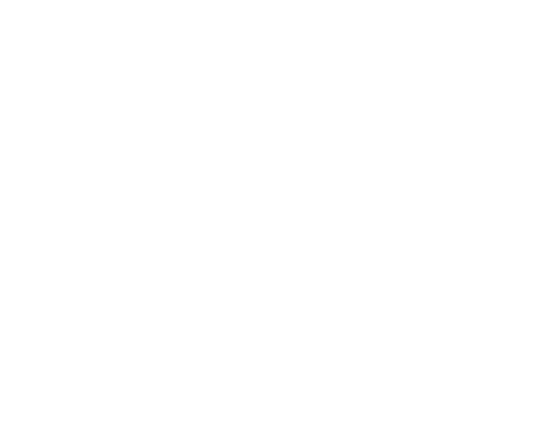 One Wise Life