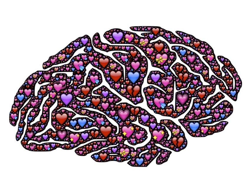 Love Brain