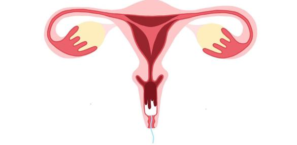 Blood and Cups: Breaking the Period Taboo