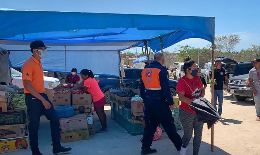 Los Cabos City Hall keeps constant track of local street vendors COVID19 special rules compliance