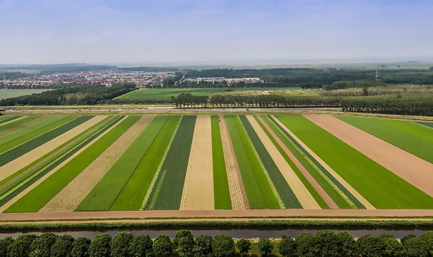 Es la agro-ecología una alternativa de sustentabilidad en la producción alimentaria: Victor Toledo, Srio. de Medio Ambiente