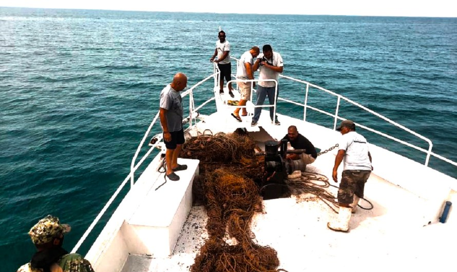 About half a mile of fishing «ghost nets» were extracted form the Sea of Cortez waters by the ship NARVAL