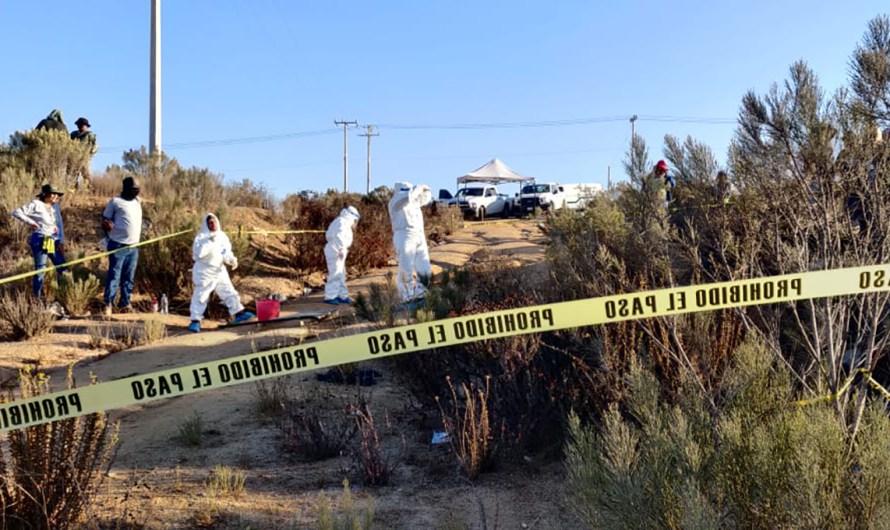 Localiza Brigada de Búsqueda, restos de 7 personas desaparecidas en Ensenada y Tijuana
