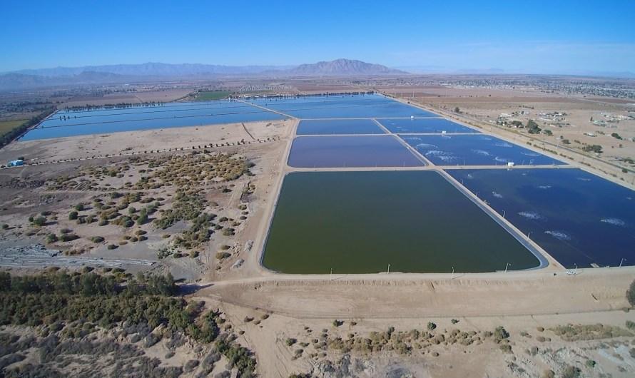 Moderniza e instala redes de conducción de agua la Comisión Estatal de Servicio Públicos de Mexicali