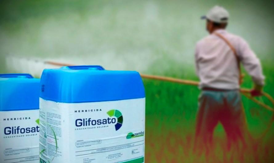 Niegan amparo a Monsanto, el Glifosato será sustituído gradualmente, Semarnat celebra decisión del juez