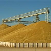 Acopian 267 mil toneladas de trigo en Valle de Mexicali, avance del 85%: Manuel Martínez Núñez