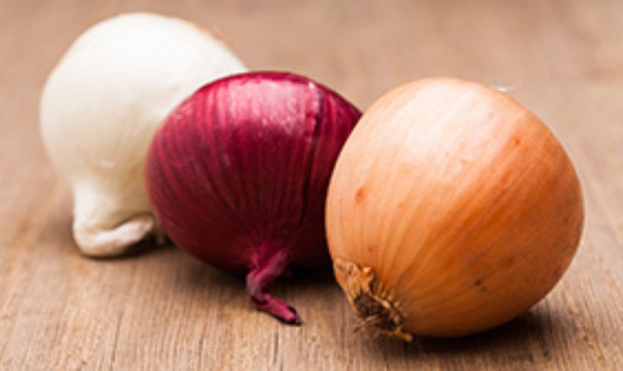 Salmonella outbreak in the US, in Mexican onions from Chihuahua,  Baja is safe: Sanitary Risk Prevention