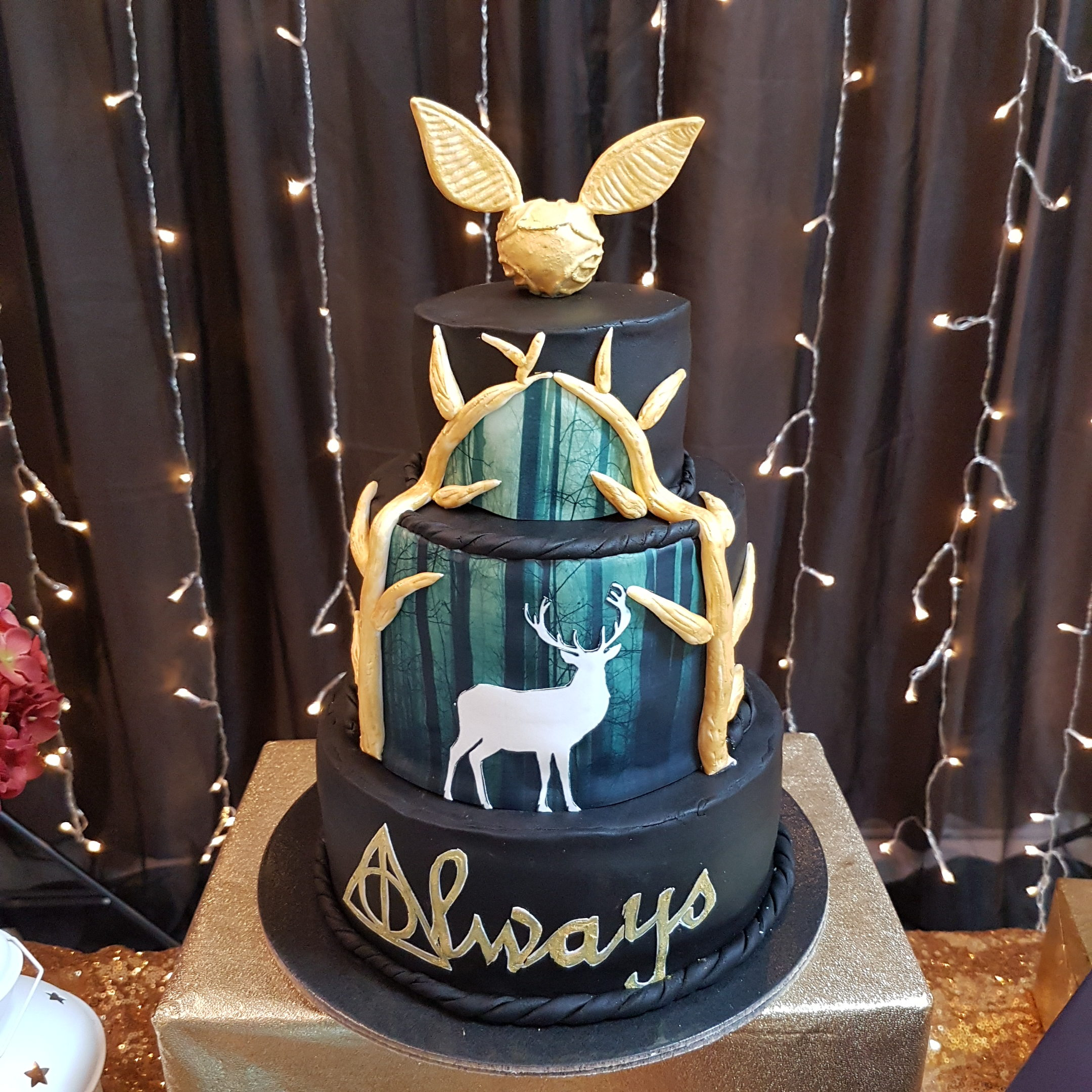 Harry Potter Cake by The Baking Experiment
