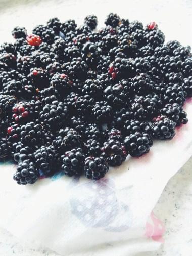 Blackberries (foraged)