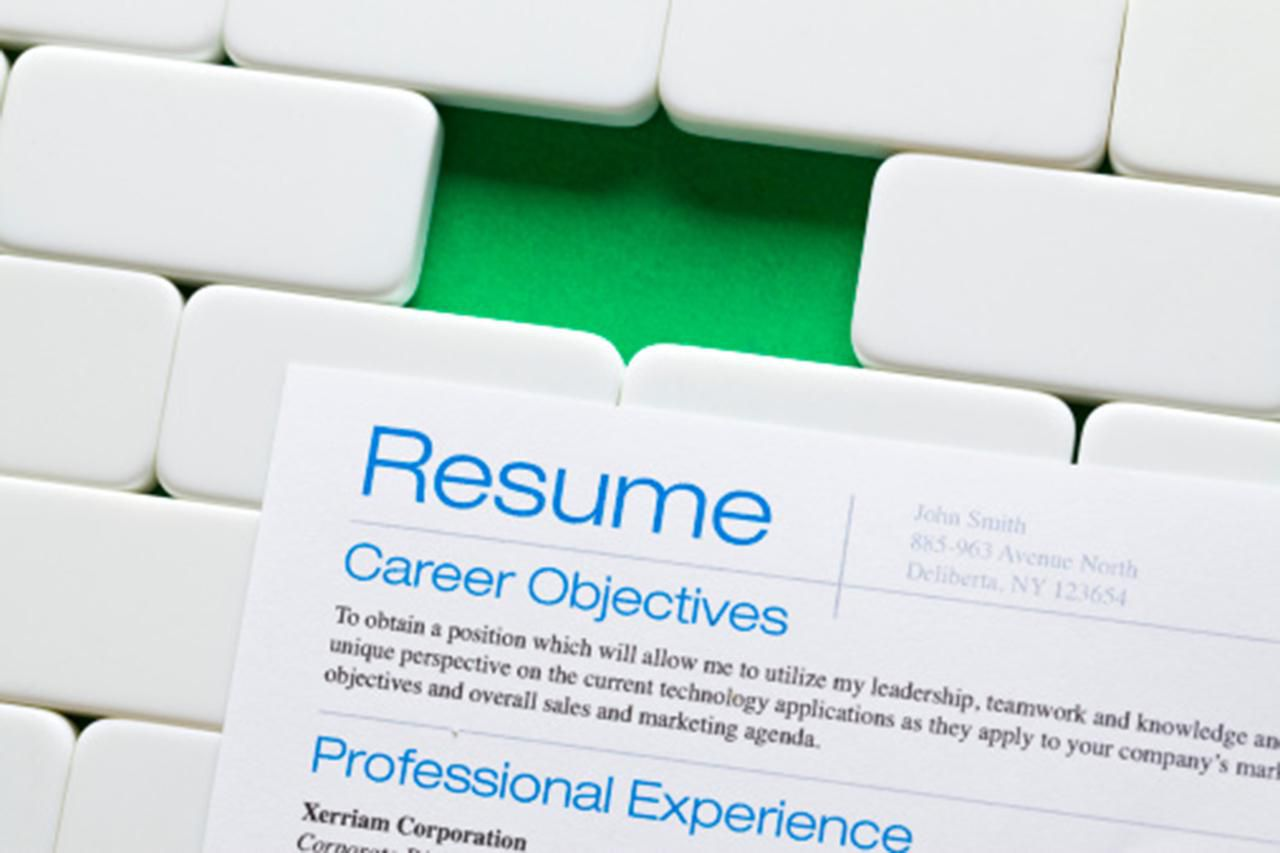 Professional Resume Length How Many Pages A Resume Should Be