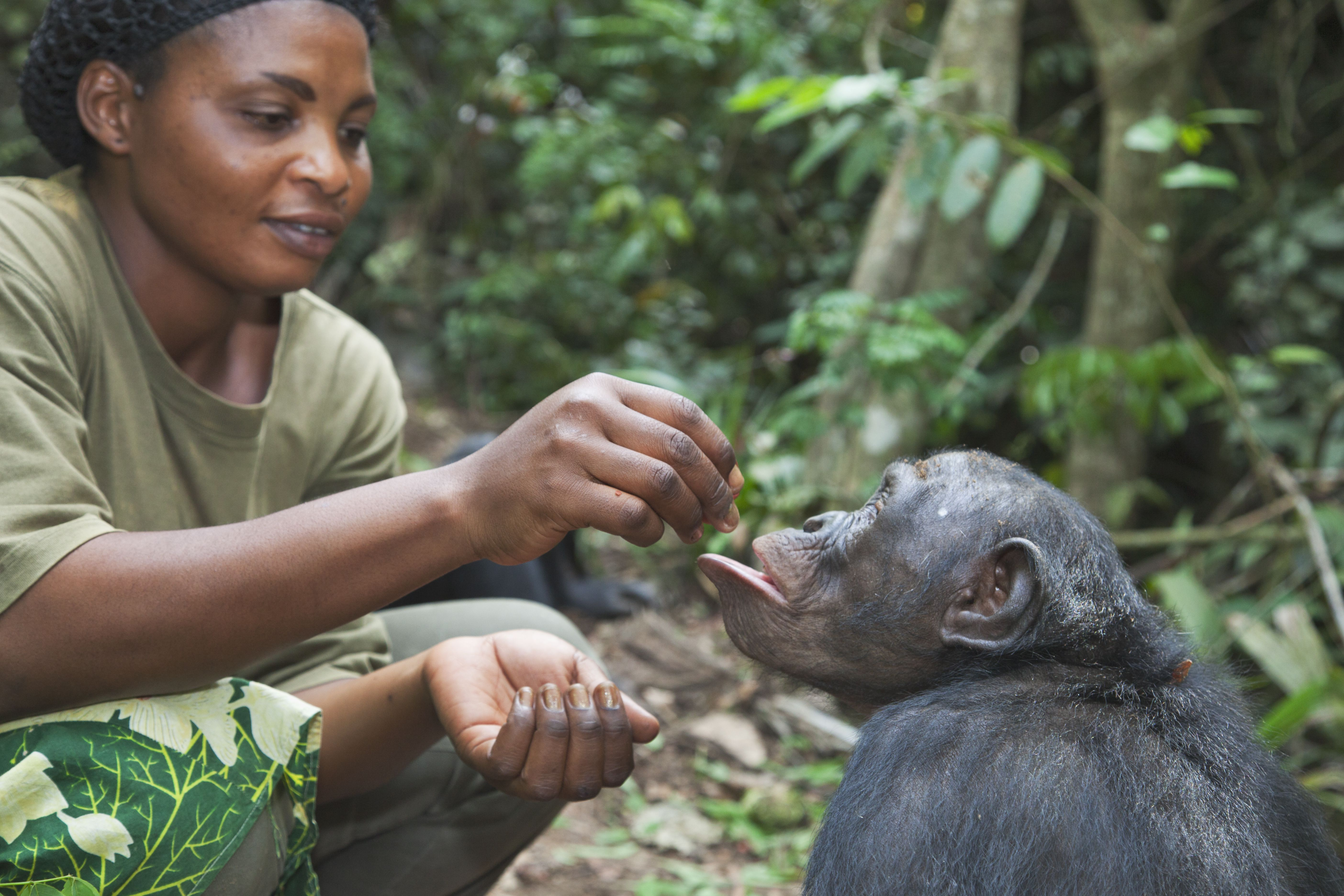Careers With Animals: Become A Zoologist