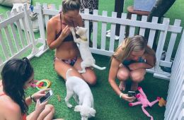 bali hotel puppies and yoga