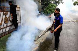 dengue fever warning