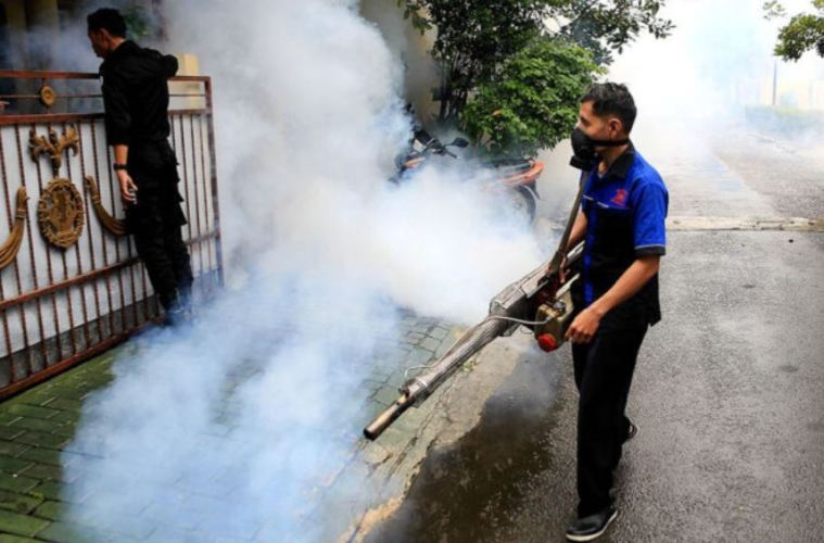 dengue fever warning