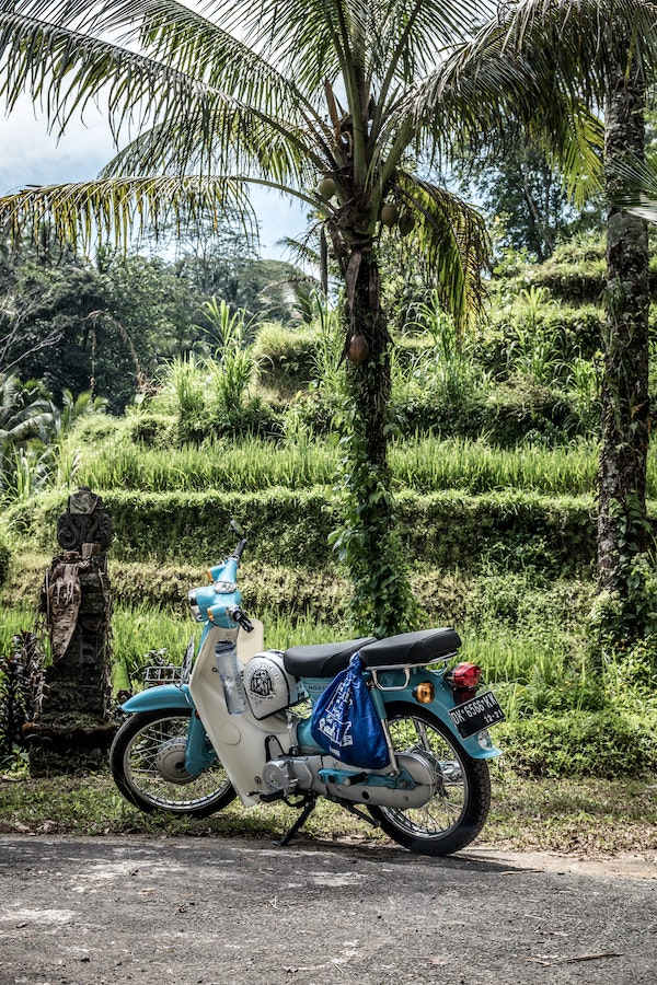 scooter rentals are cheap in bali