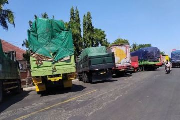 Truck Drivers Protest At Bali Port After Being Charged For Rapid Tests To Enter The Island