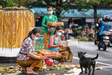 27 Villages In Bali Village Enter Red Zone For Rabies