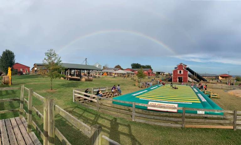 7 pumpkin patches in Alabama within 2 hours of Huntsville