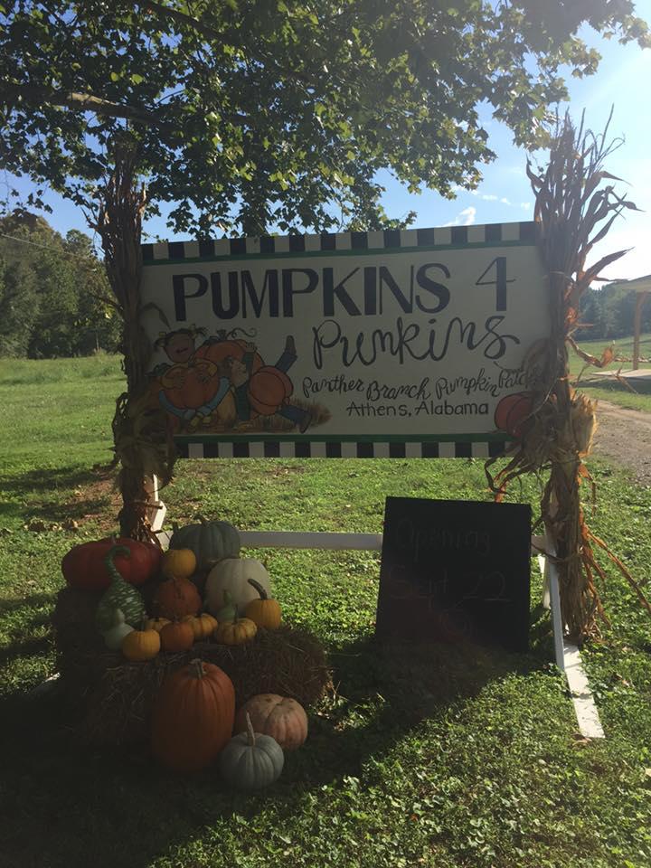 Pumpkin Patch Near Huntsville