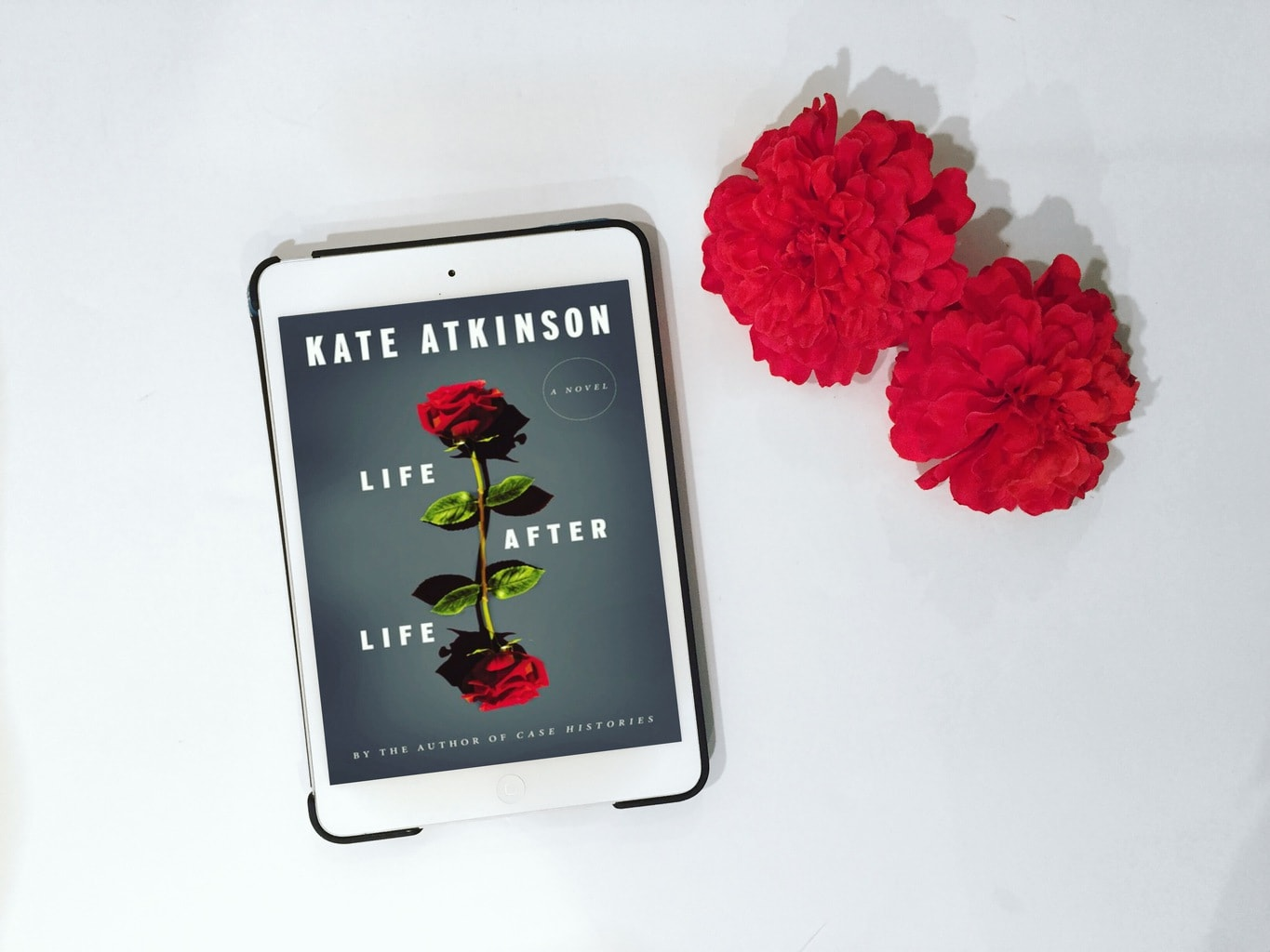 life after life review