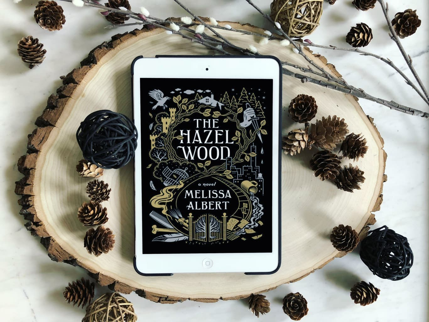4 Reasons to Read The Hazel Wood