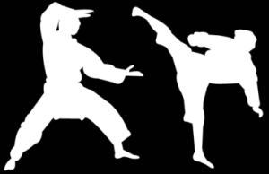 New ROK Article: How to Choose a Martial Art