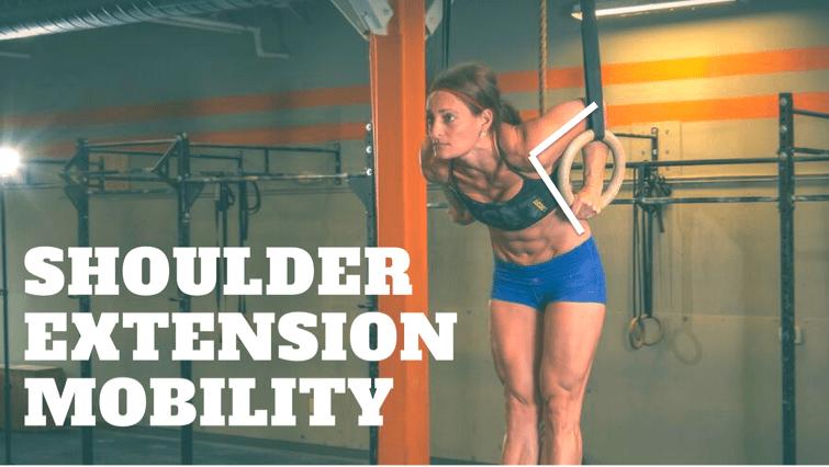 shoulder extension mobility