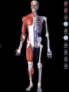 Essential Anatomy fitness app