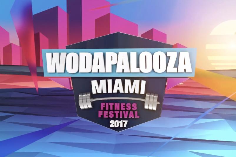 Wodapalooza 2017 Logo