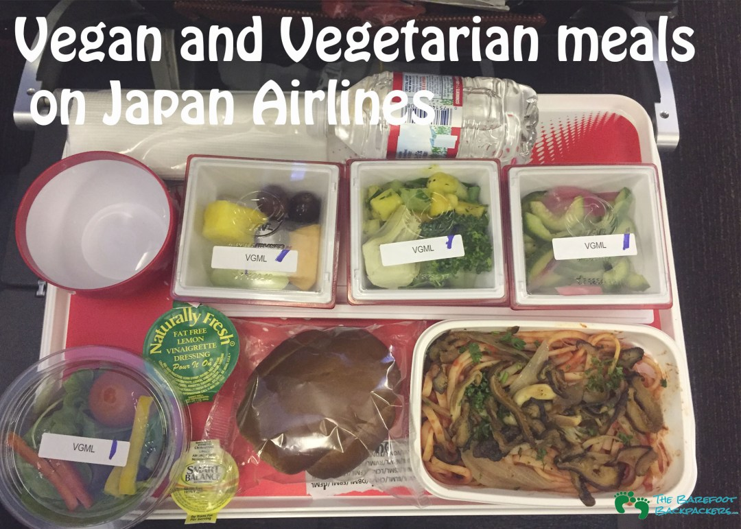 how to eat vegan airplane