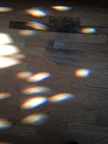 Rainbowsonthefloor2