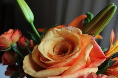 Flowers1 copy