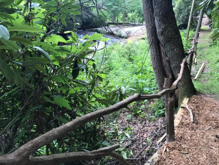 wooden railing to the left of a path leading up the mountain