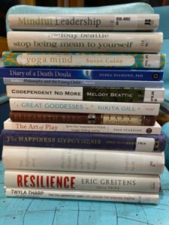 A stack of 13 books