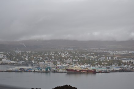 Akureyi, located 60 miles below the Arctic Circle