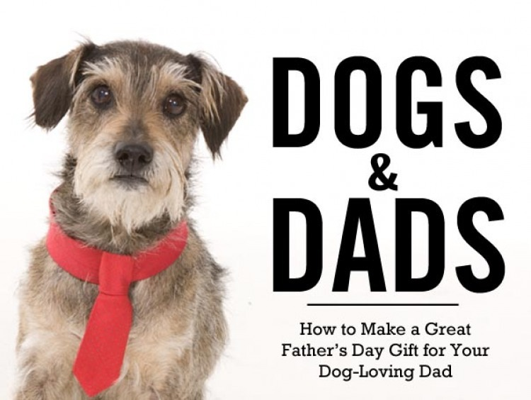Dogs Dads The Bark