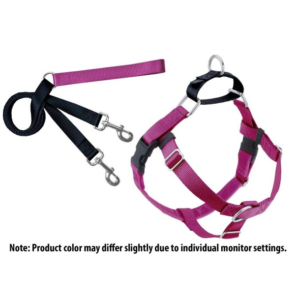 No Pull Harness and Leash set