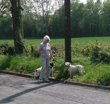 Harry & Jayne having a stroll