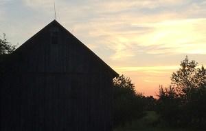 Belamour_barn3