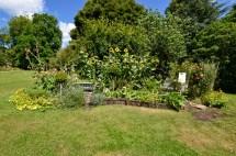 wi garden 20 july 2017 - 3