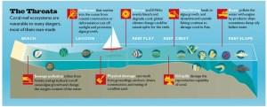Coral Reefs: Gone, or Almost Gone by Caroline Yuratich