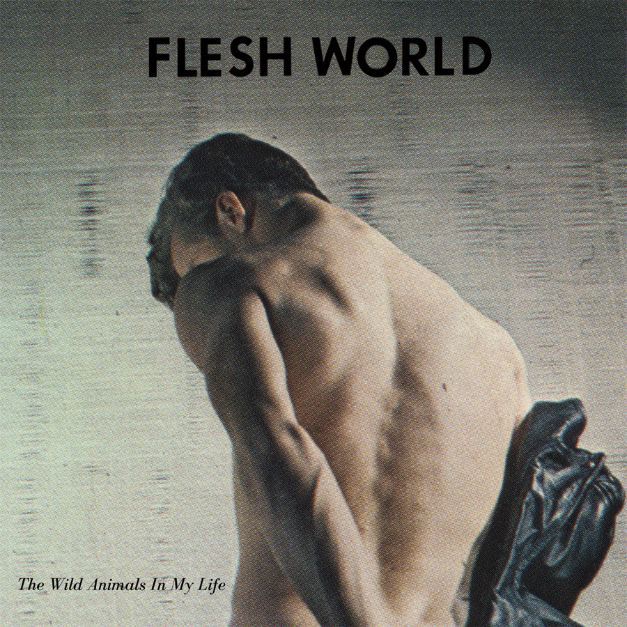 flesh world cover