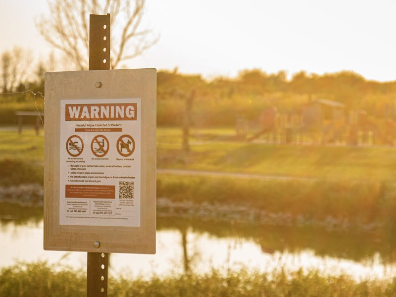 """A sign posted at Fort Riley Marina on Milford Lake warns of the possibility of toxic algal blooms that can be harmful to humans and pets. The area is currently under a """"warning"""" recommendation from the KDHE. Zach Bauman/The Beacon"""