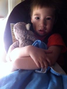 Monkey and Kai on the plane